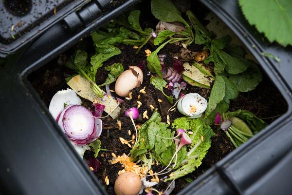 Compost en appartement